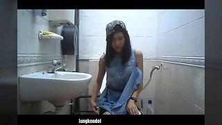 spycan in toilet