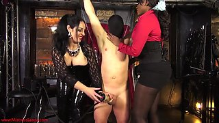 Busty babes having fun with their slave