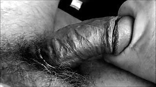 215 Stroking an old Cock bw