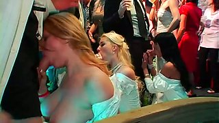 Whorable brides are cheating on the wedding party